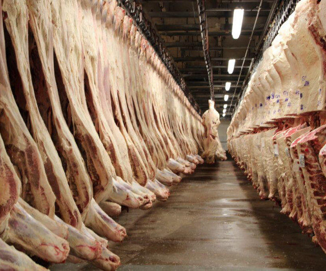 Производство говядины на Ставрополье увеличилось на 15%